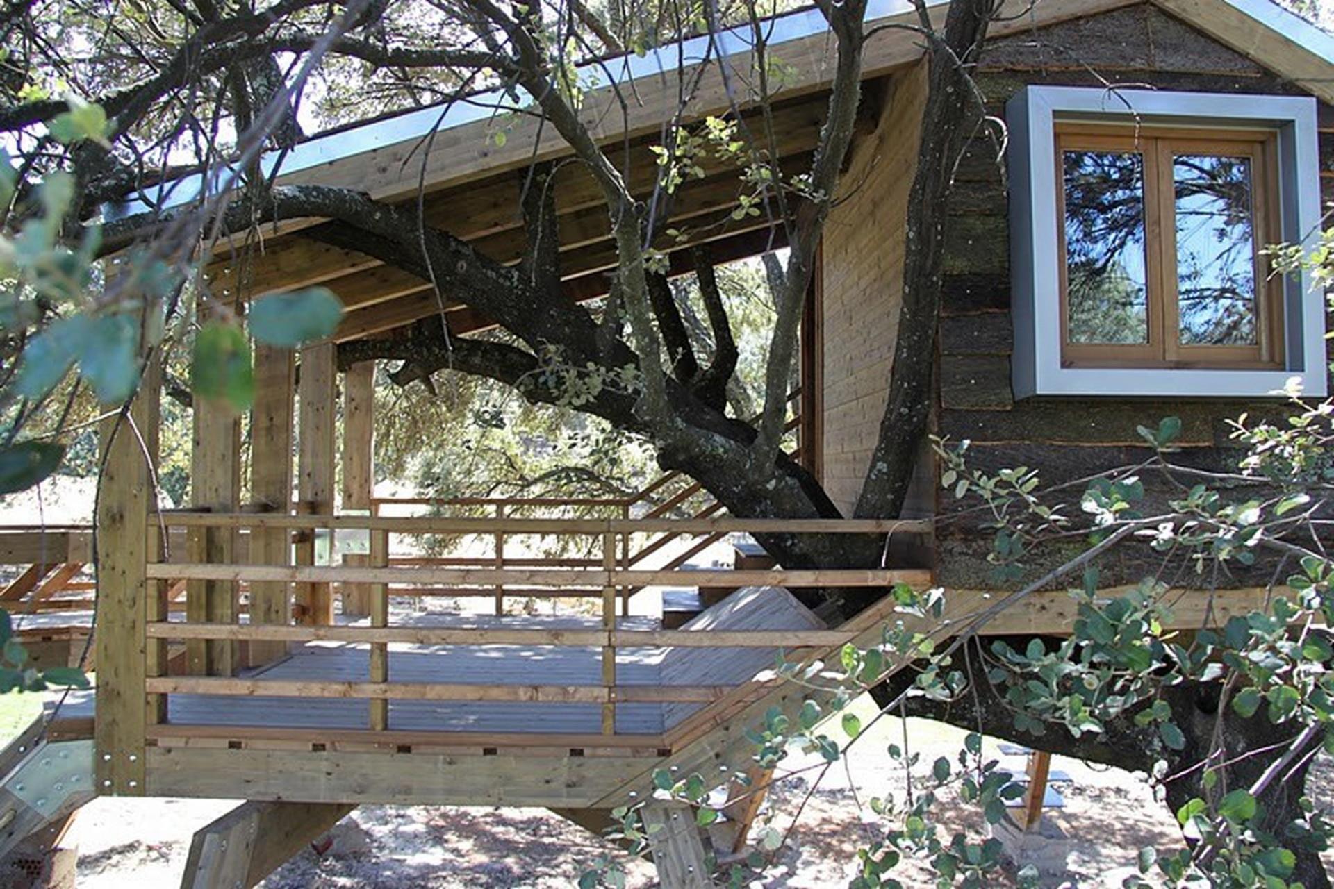 La casa del árbol del estudio Urbanarbolismo