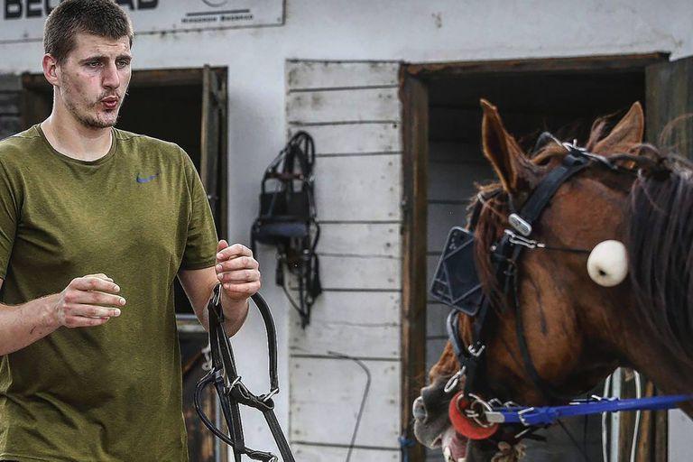 A los 15 años, Nikola Jokic trabajaba en el establo de una familia, y desde entonces le gustan los caballos y hasta tiene uno de carreras; hoy el serbio es el principal candidato a recibir el premio al jugador más valioso de la NBA.