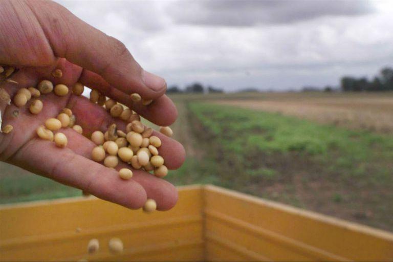Procesan a empresarios del agro en un caso ligado a un default de $1000 millones