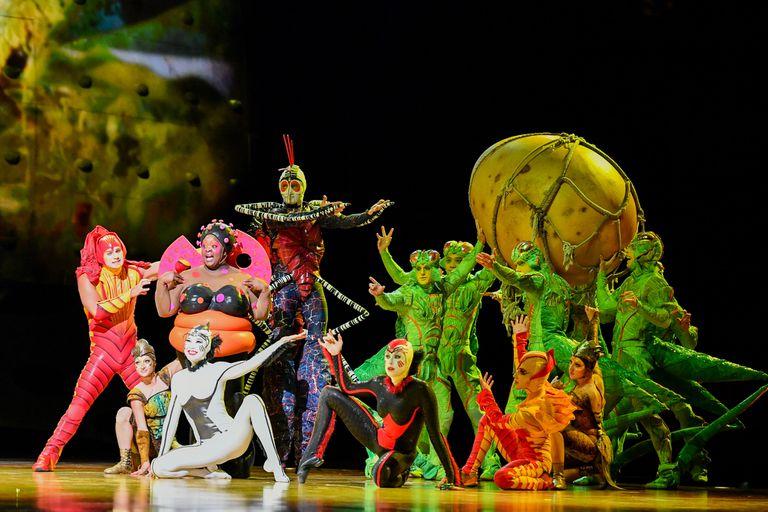 Cirque du Soleil regresa al país en junio con su espectáculo original OVO