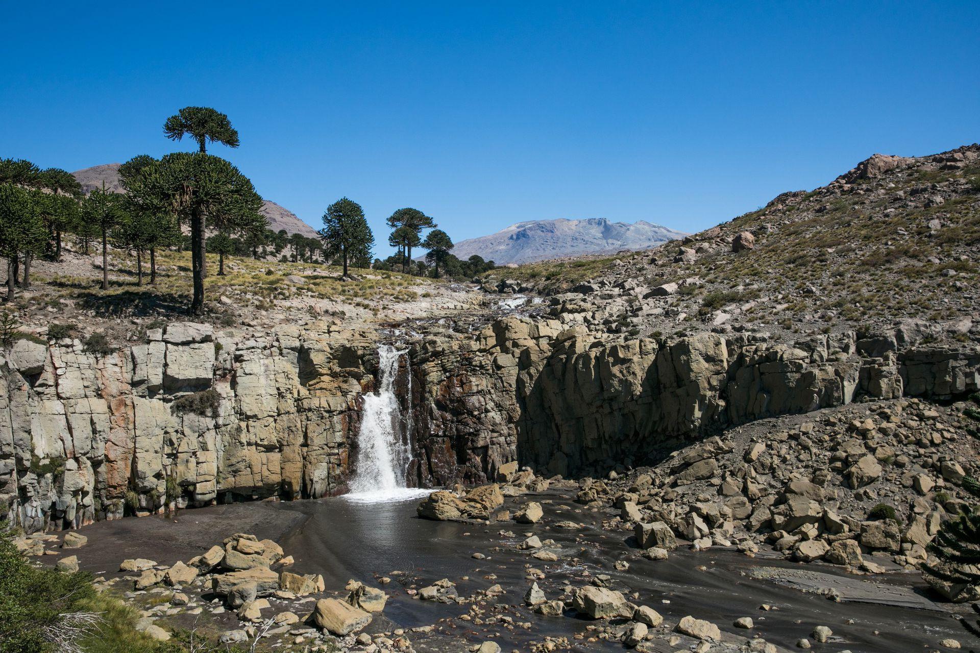La cascada del Gigante, sorprendente formación, parte del circuito de las Siete Cascadas.