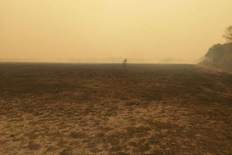 Chaco y Formosa en llamas: calculan que ya se quemaron unas 100.000 hectáreas