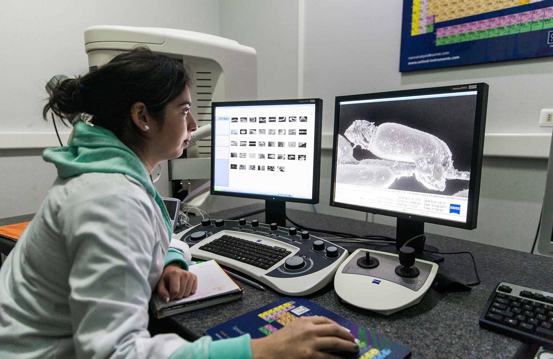 Laboratorio de bioarqueología donde se trabaja sobre la investigación y conservación de las momias de Chinchorro.