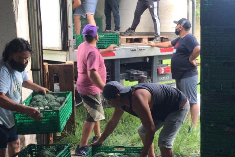Rescatan y reparten más de 50.000 kilos por mes de verduras y frutas para ayudar