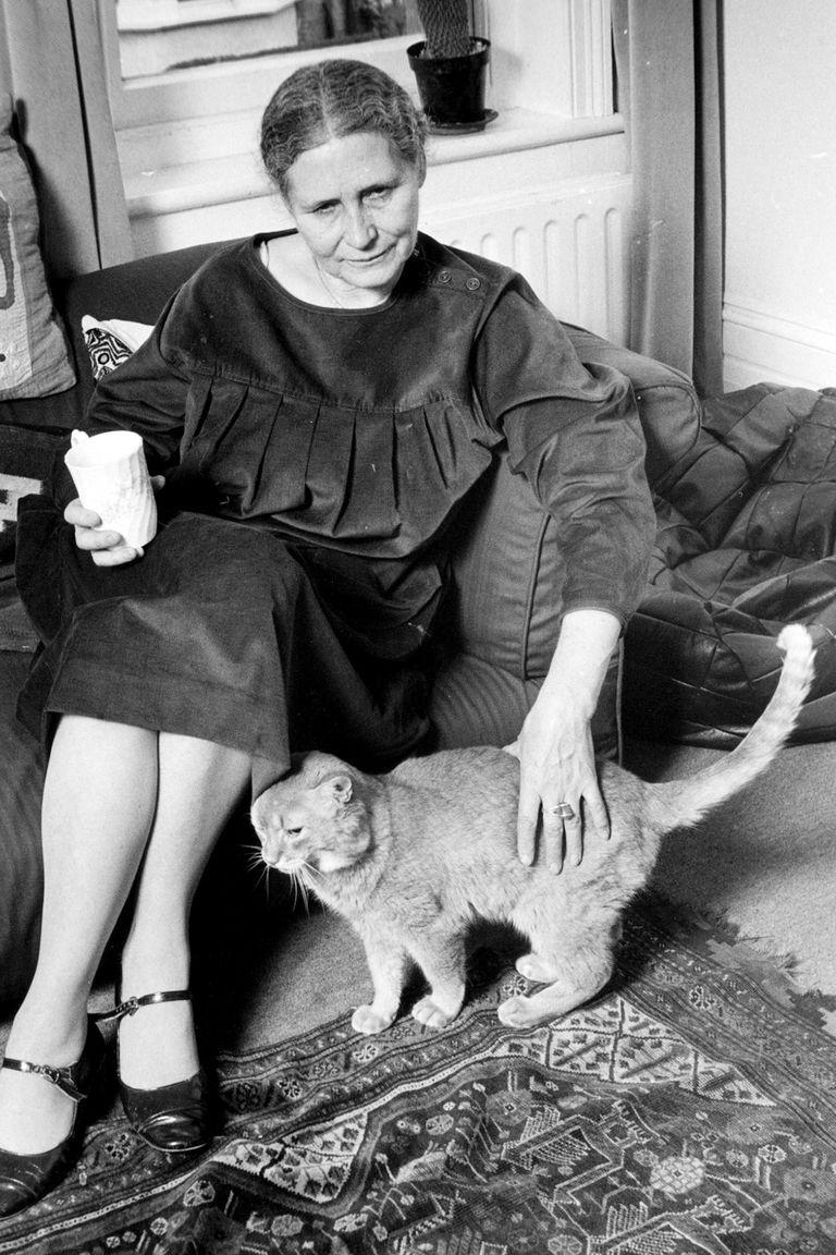 Doris Lessing dejó asentado su amor por ellos en Gatos ilustres
