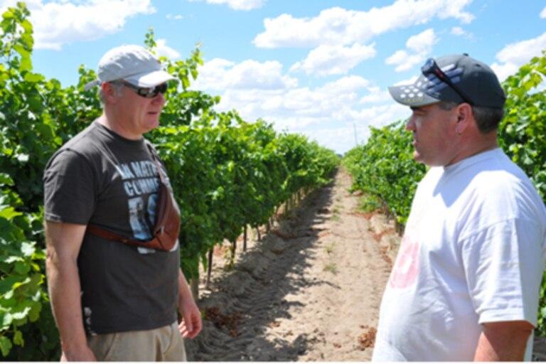 Urs Gmuer y Philippe Bovet, dos de los tres socios suizos en una charla en los viñedos