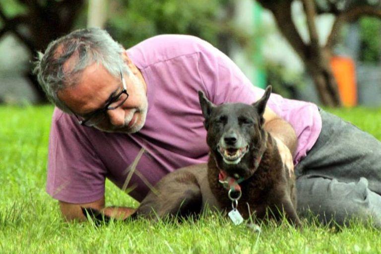Cambió su despacho por un refugio y ayudó a salvar a 12.000 perros