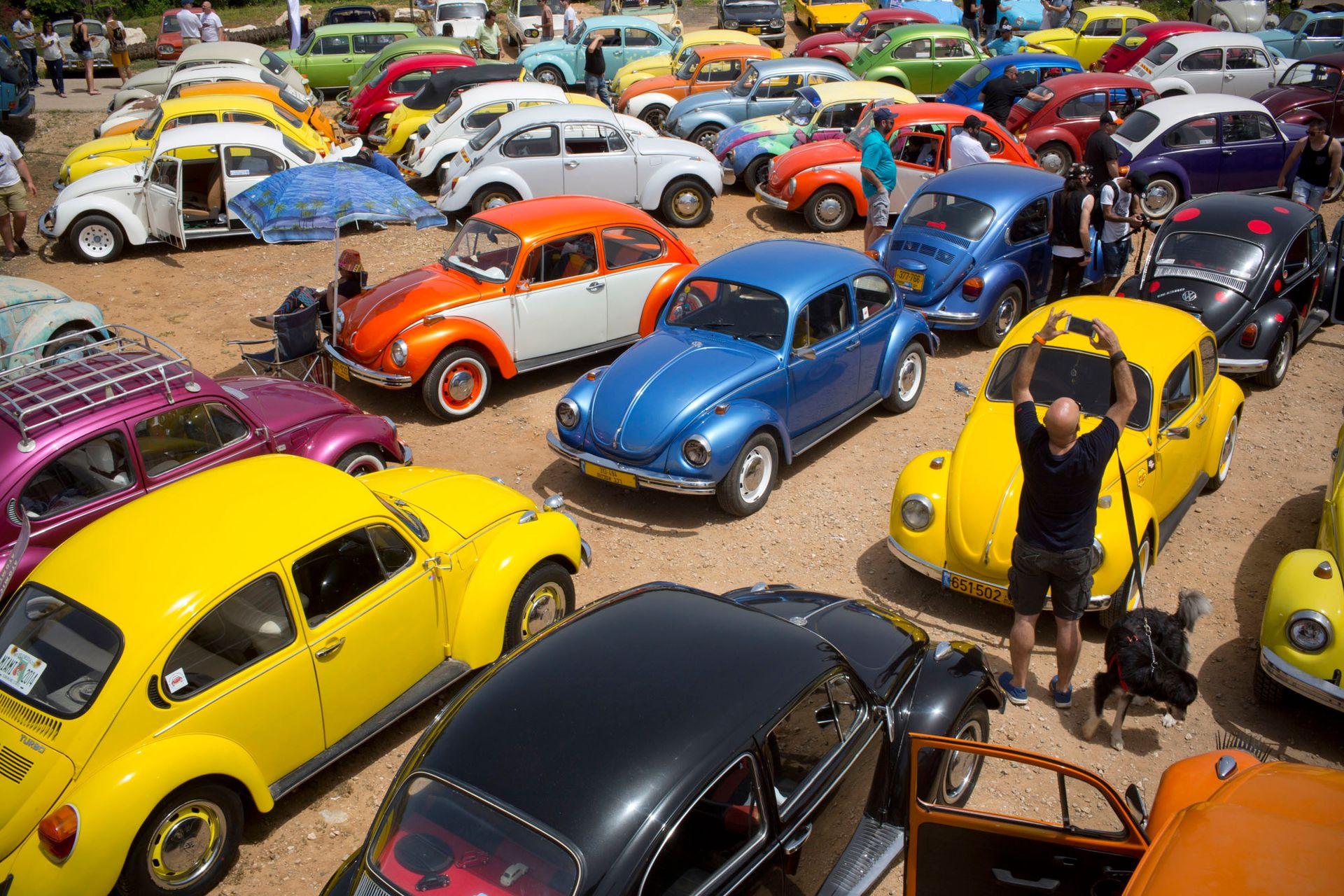 """El """"Club del escarabajo"""" de Israel fue fundado en 2001 y lo conforman 500 miembros"""