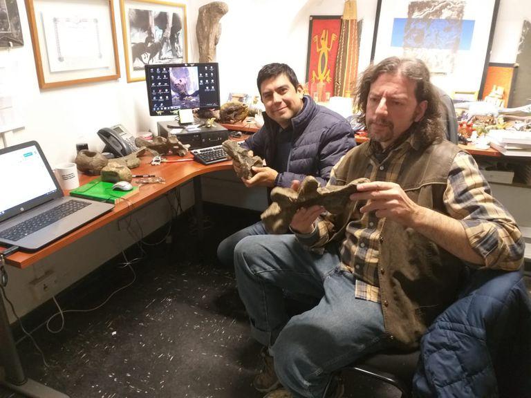 Los paleontólogos David Rubilar-Rogers y Bernardo González Riga trabajando en el Museo Nacional de Historia Natural de Chile.