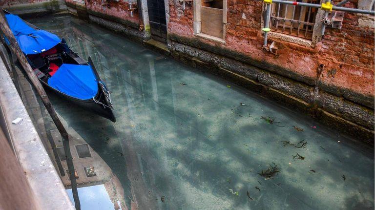 El agua de Venecia, más limpia por la ausencia de tránsito. Fuente: AFP/ANDREA PATTARO