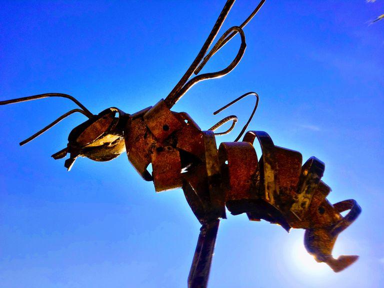 La miniatura de la abeja