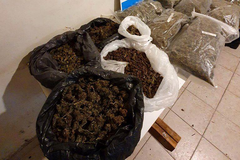 La marihuana secuestrada por la Policía de la Ciudad