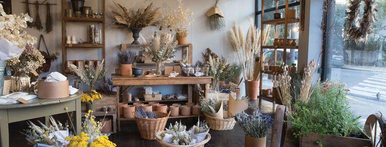 Cuatro tiendas para comprar plantas, flores y macetas con onda en Buenos Aires