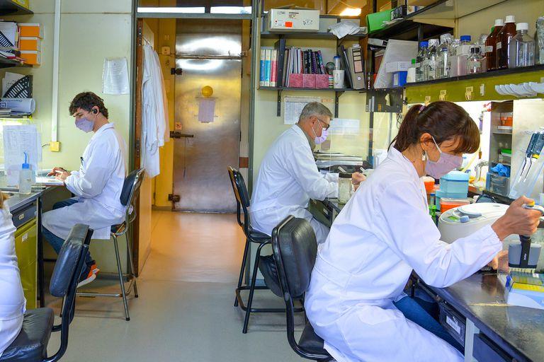 El Gobierno otorgó un aumento del 10% a los investigadores del Conicet