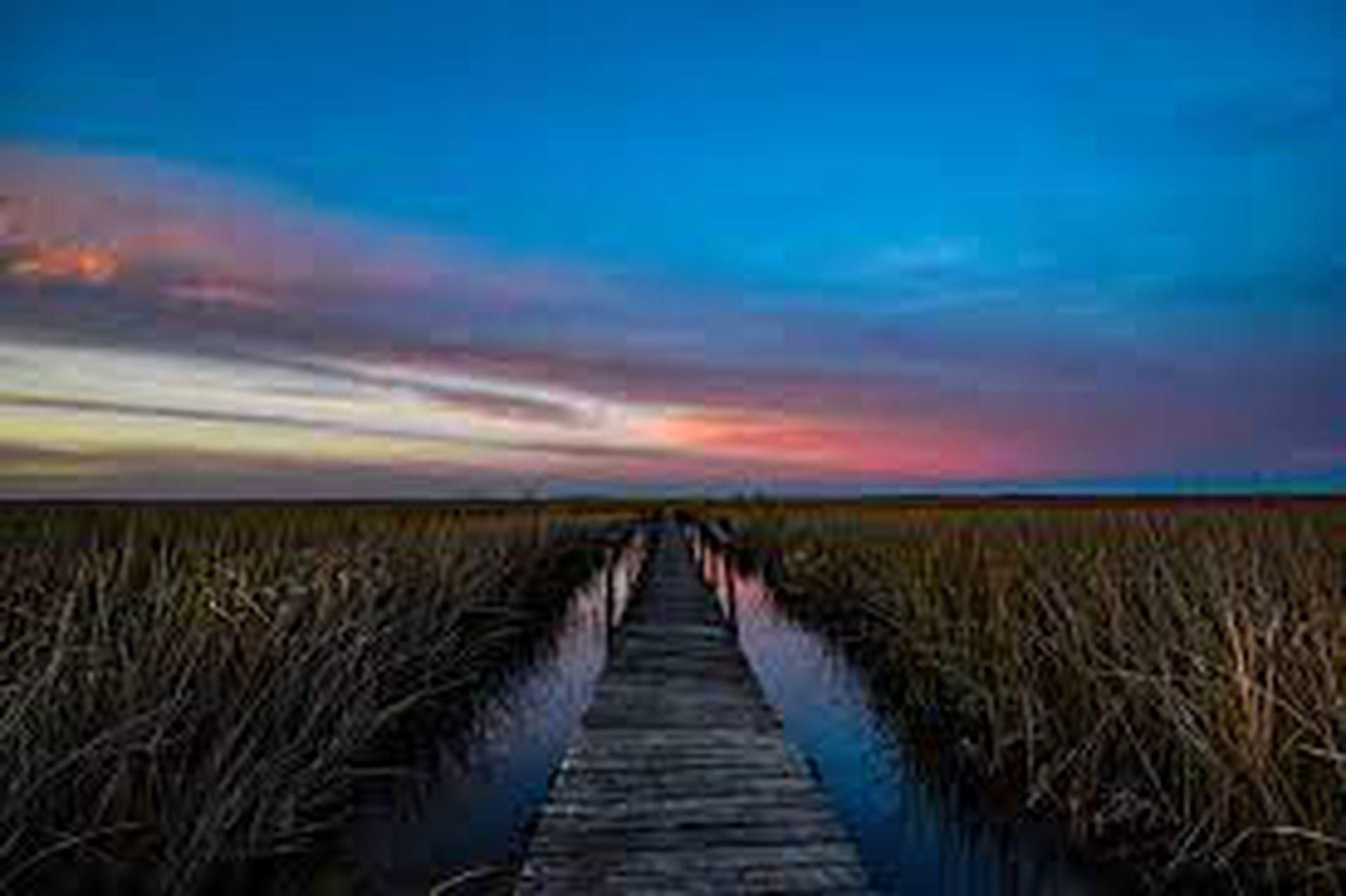 Parque Nacional Ciervo de los Pantanos, una belleza natural en Campana