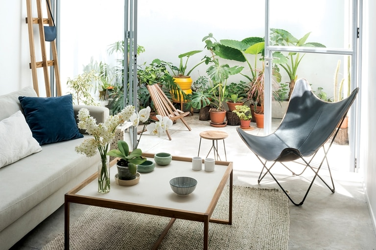 Foto de un living conectado con un patio interno.
