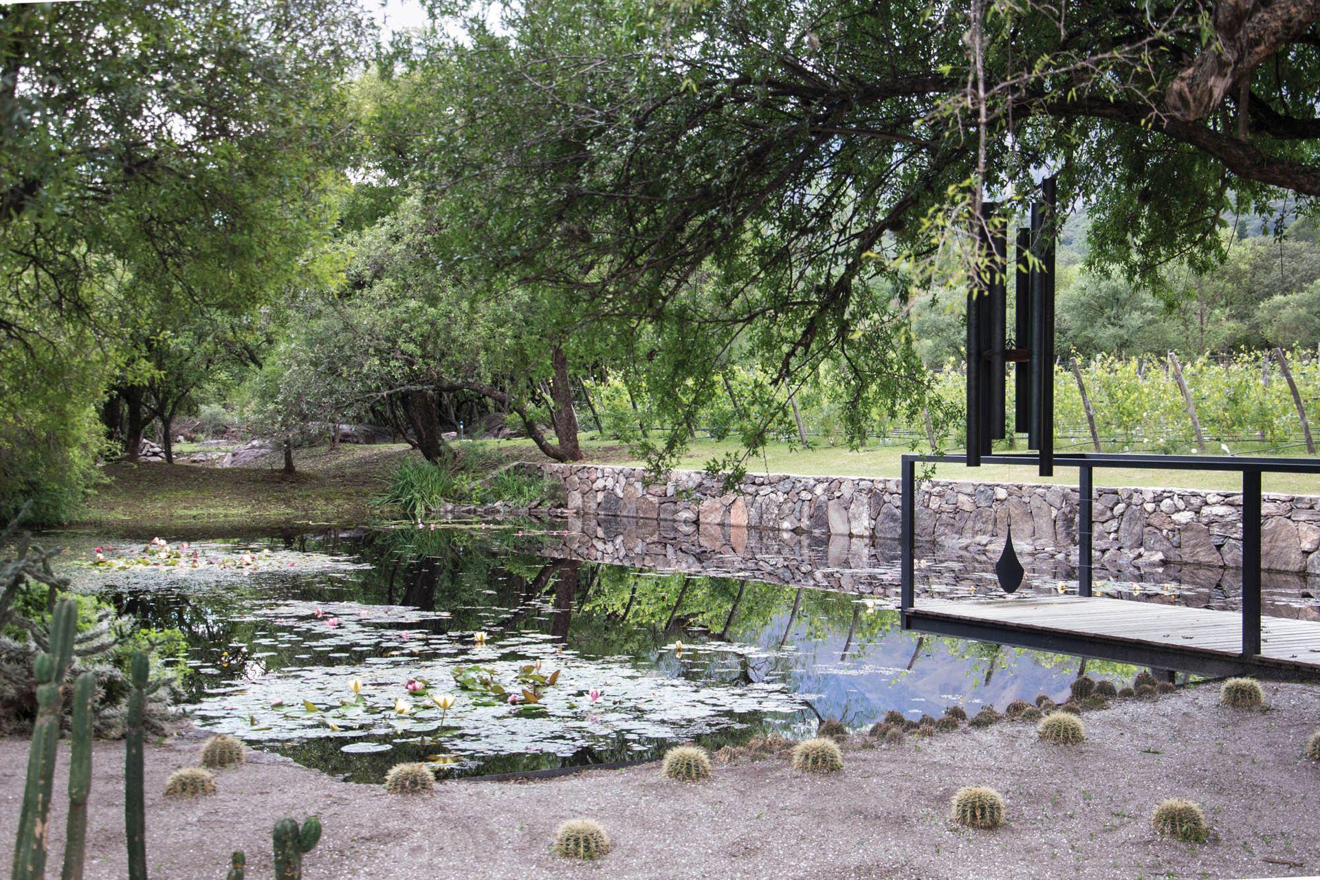 El estanque de la bodega, junto a un jardín de cactus que produce un efecto muy especial.