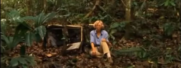 Crudo relato: se estrelló su avión y, perdida en la selva, halló su gran pasión