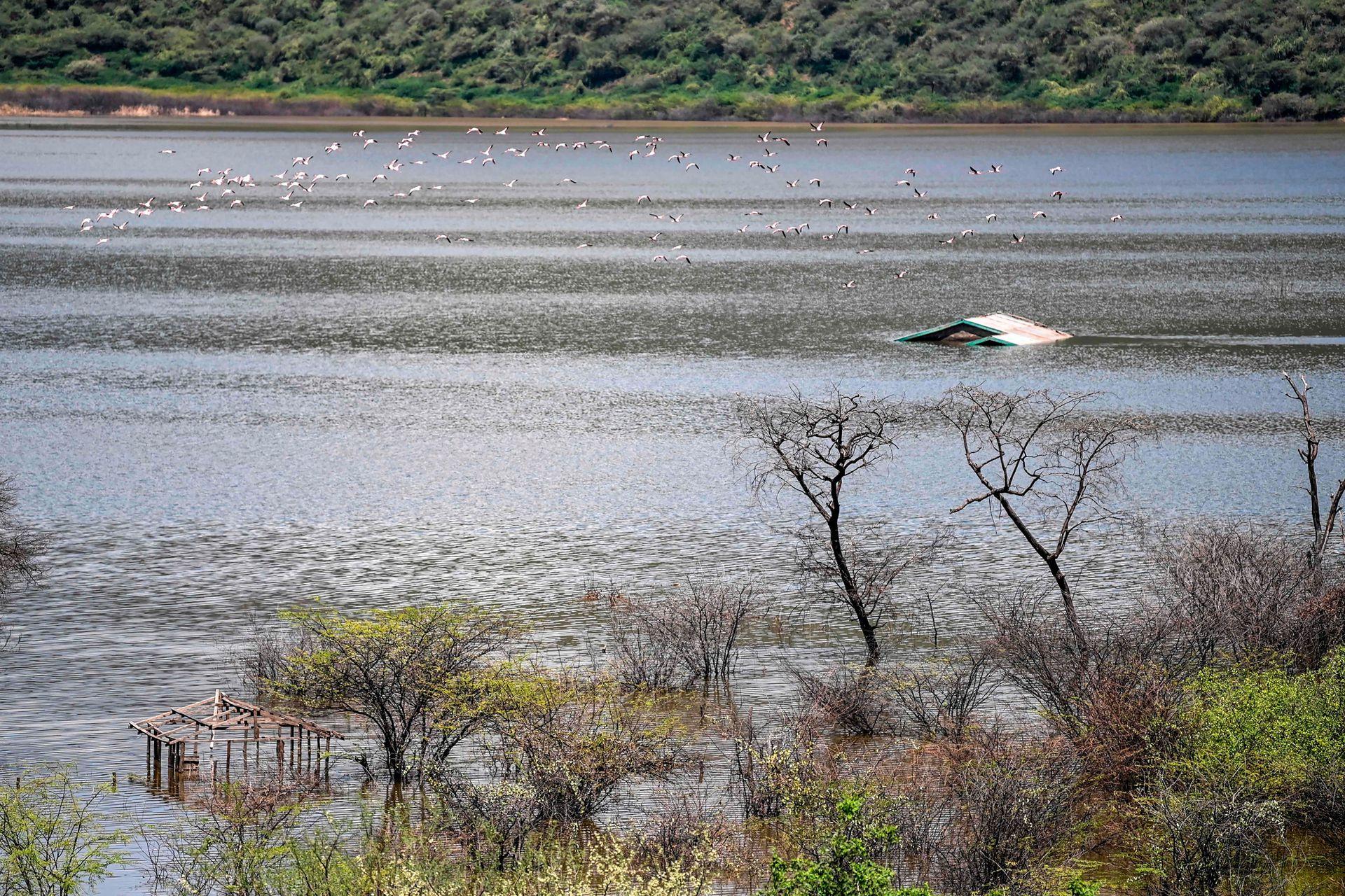 Este fenómeno provoca importantes inundaciones a lo largo de la cadena de lagos