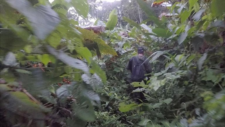 En el Tapón del Darién no hay caminos abiertos. Todo el tiempo hay que luchar contra la vegetación.