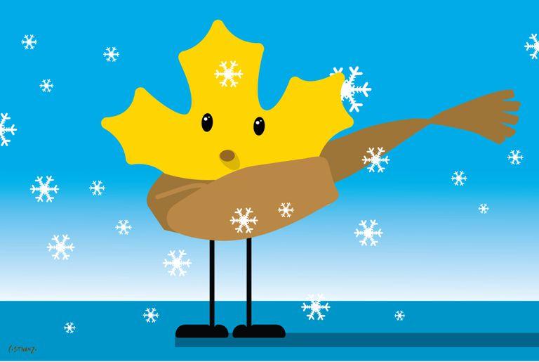 Pronóstico del tiempo: simulacro de invierno