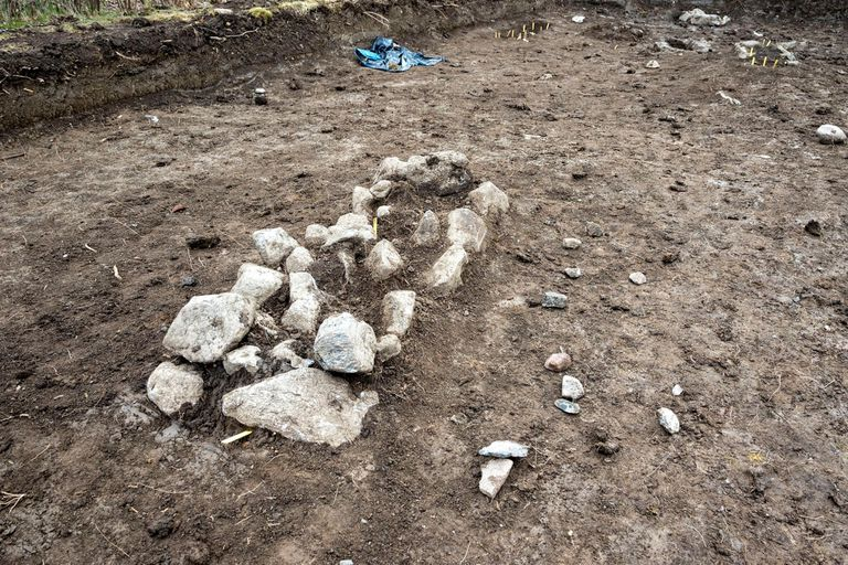 Los arqueólogos encontraron los restos de bebés gemelos vikingos