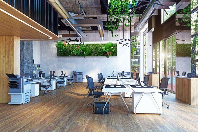 Oficinas sustentables: qué hacen las empresas para sumar al impacto positivo