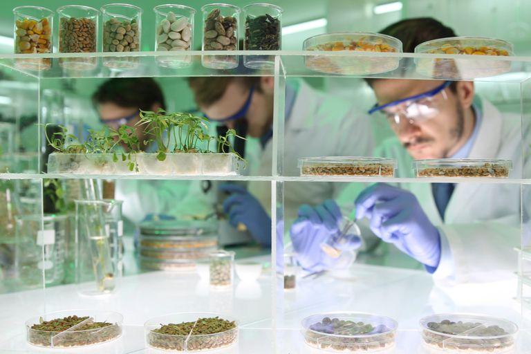 Una de las actividades que podía comenzar a estar eximida de algunos impuestos era la biotecnología