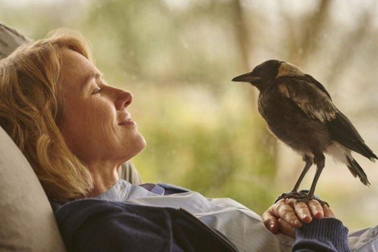 Naomi Watts es la protagonista de Penguin Bloom, la película de Netflix que se ubicó entre las más vistas en Argentina