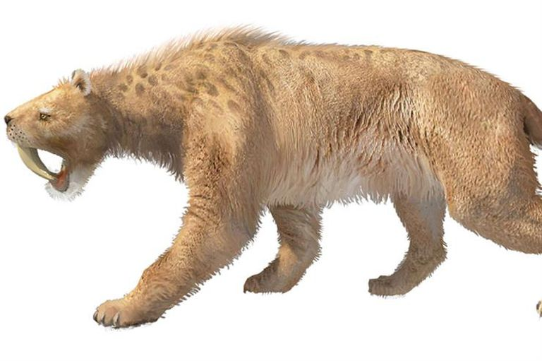 La huella prehistórica de nuestros miedos
