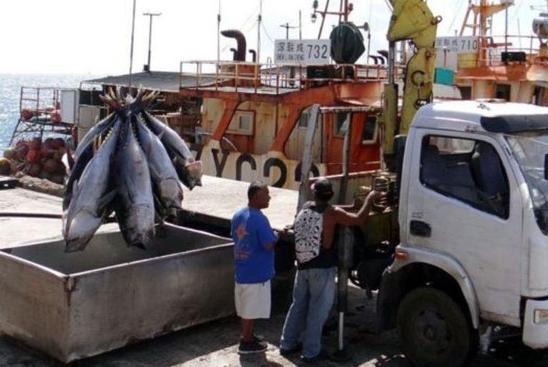 Trabajadores descargan atún de un barco de pesca en Majuro para su exportación a los mercados internacionales.