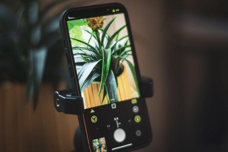 Halide permite simular un modo macro con la cámara convencional de un iPhone 8 o posterior