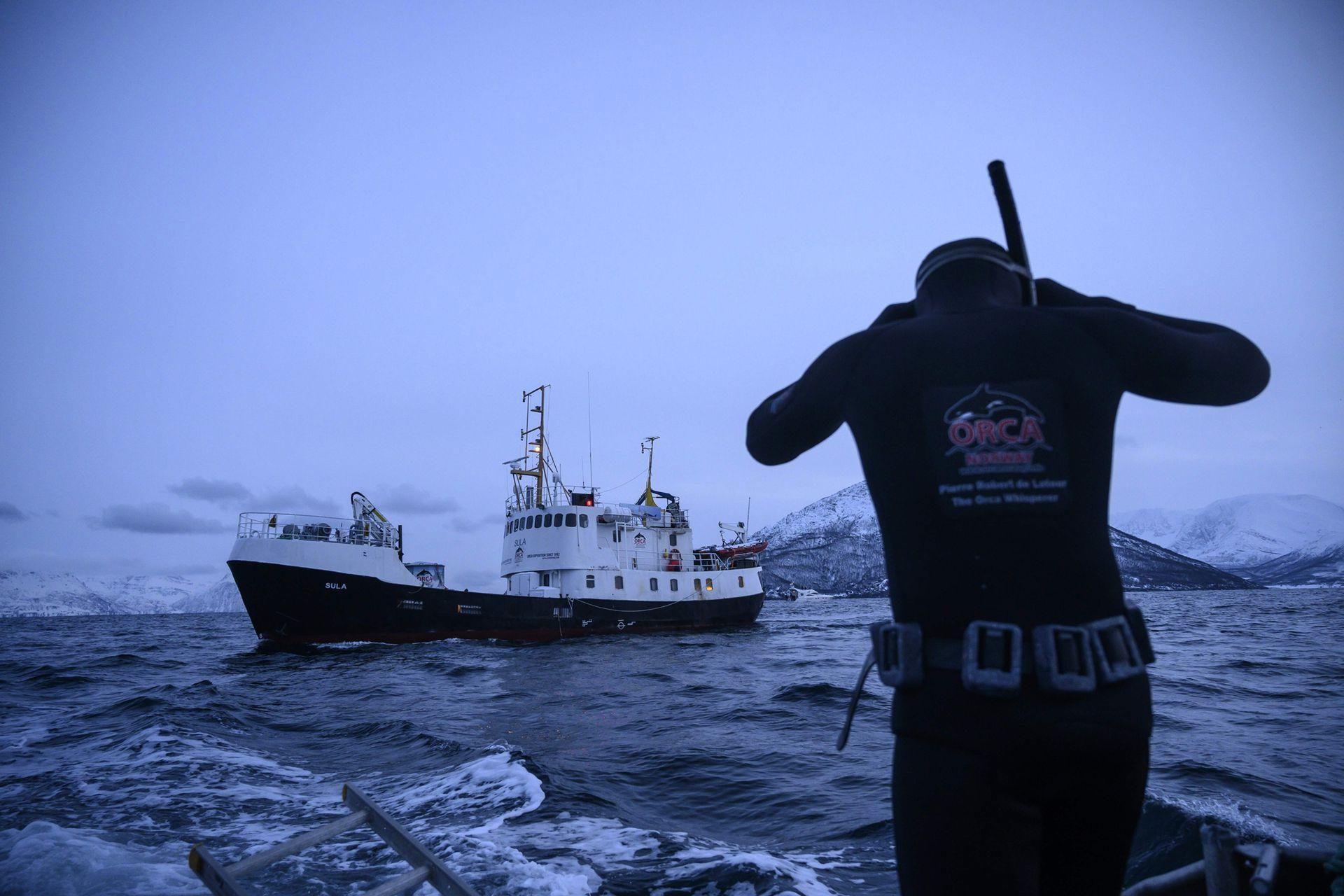 El experto en orcas francés Pierre Robert De Latour busca orcas desde un bote de aluminio