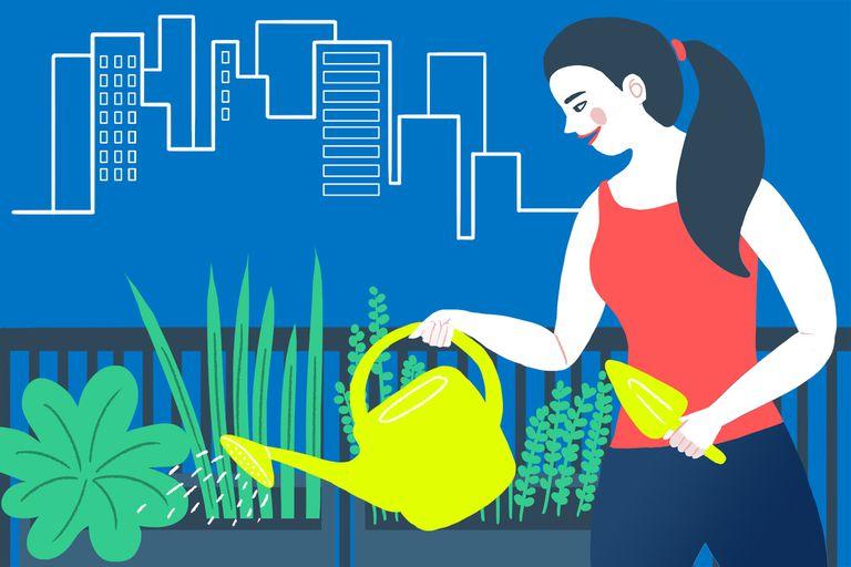 Tips para armar tu propia huerta urbana