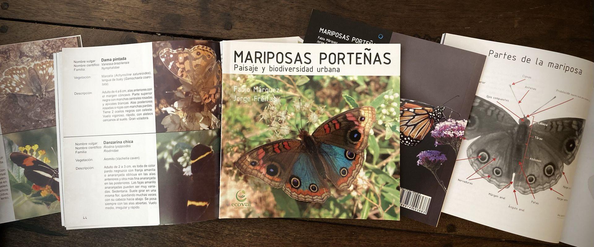 Mariposas porteñas, una completa guía para identificar mariposas en la ciudad