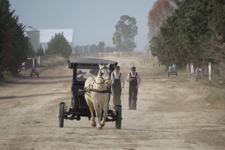 La colonia menonita de La Pampa sólo se puede visitar con una guía autorizada