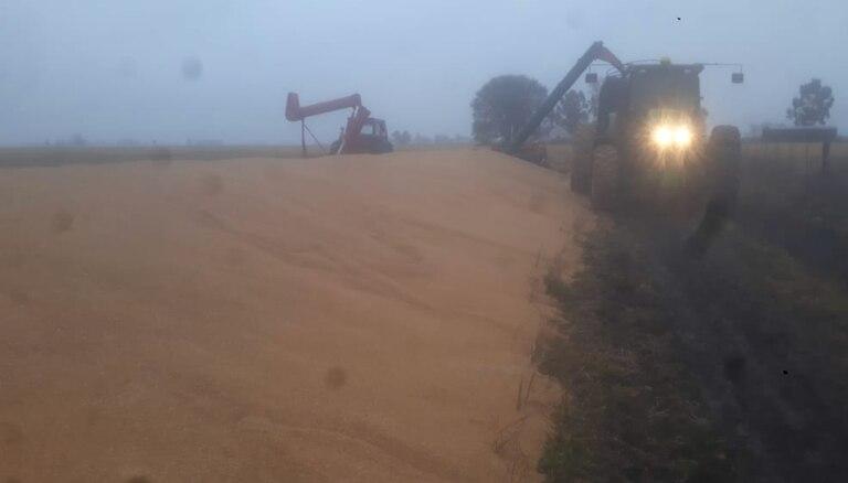Pese al mal tiempo en Coronel Suárez, el productor Néstor Hirigoity trató de cargar y rescatar todo el cereal posible
