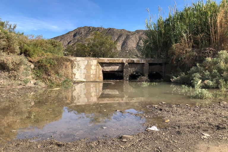 La contaminación de la minería podría estar afectando la tierra y el agua de Jáchal