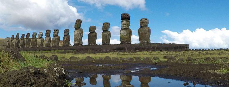 Líquenes, erosión y ganado: la Isla de Pascua combate el deterioro de los moais