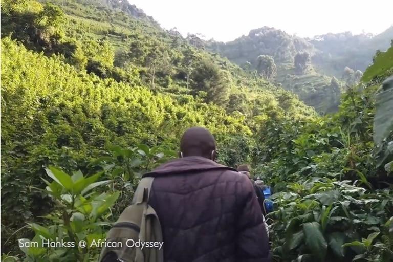 Este hombre se aventuró en una excursión de cuatro horas por la selva para conocer a una familia de gorilas en Uganda