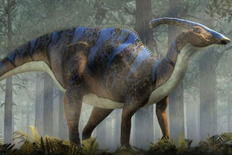 El hadrosaurio vivió hace 60 millones de años y es una especie que ayudará a los científicos a llenar un vacío que tienen en la reconstrucción de la evolución de los dinosaurios