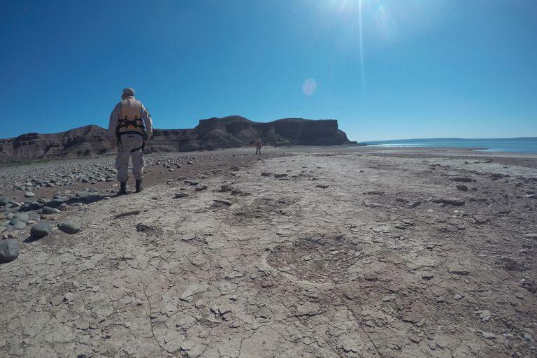 Dinosaurios. Hallan huellas de 100 millones de años en un embalse patagónico