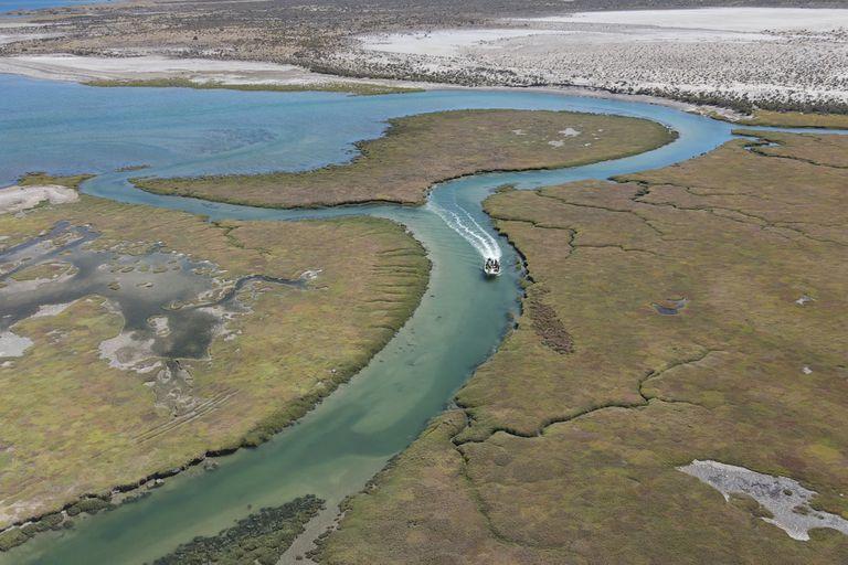 Chubut. Un inmigrante fundó un pueblo alguero y hoy es un santuario natural