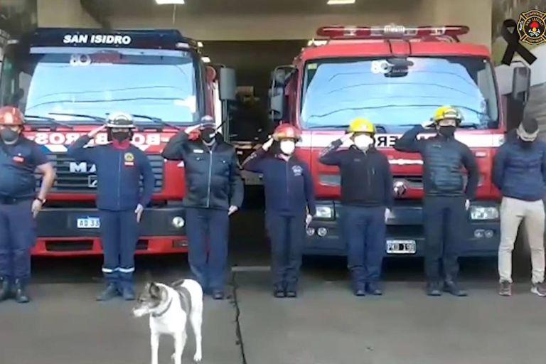 """Bombi fue definida como una """"compañera fiel"""" por el jefe de los bomberos de San Isidro, Daniel Gallego"""