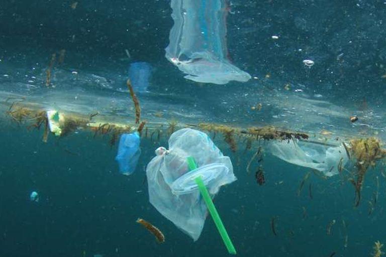Medio Ambiente: se prohíbe el plástico de un solo uso en los Parques Nacionales