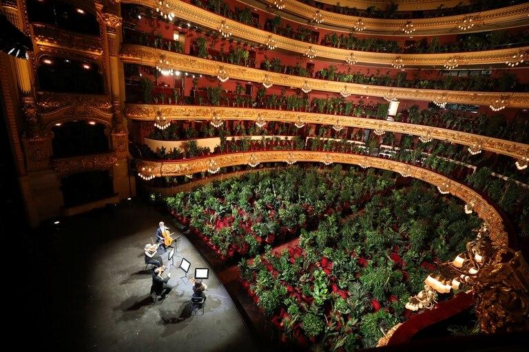El Gran Teatro del Liceo, en Barcelona, durante un ensayo con plantas en reemplazo del público, poco antes de reabrir sus puertas en junio de 2020