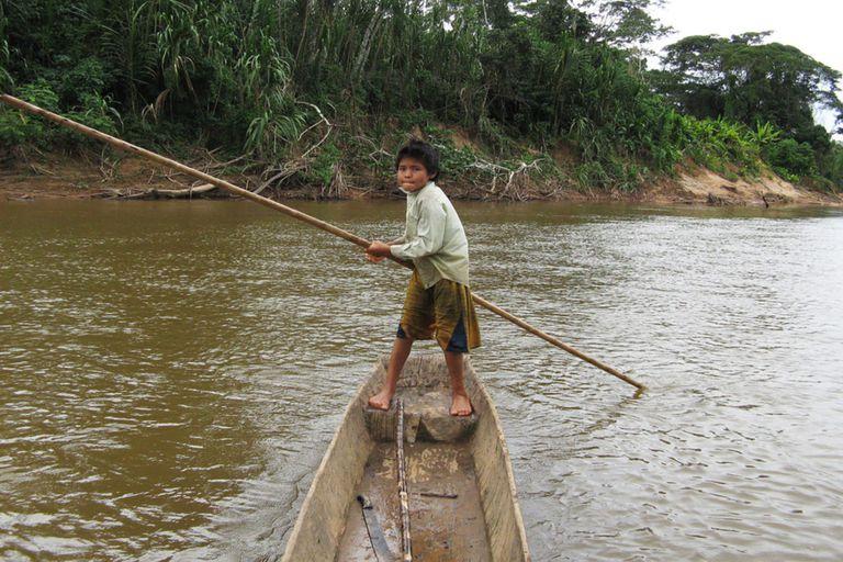 Los tsimane son muy activos físicamente y consumen una dieta más rica en fibra que incluye verduras, pescado y carne magra