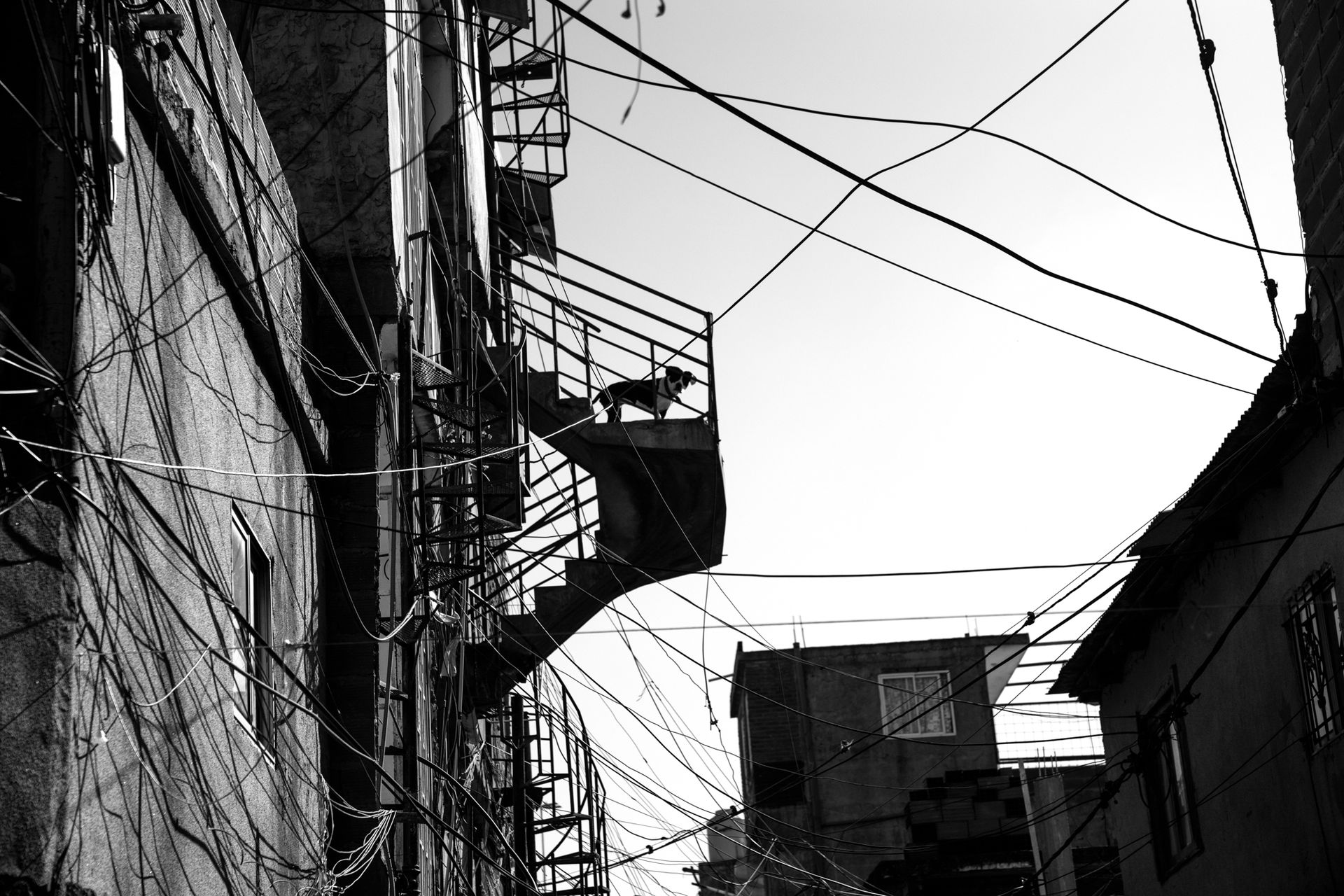 Cables tendidos sin ton ni son. Desde las alturas del barrio se ven los autos surcando la autopista. También las torres opulentas de la City porteña.