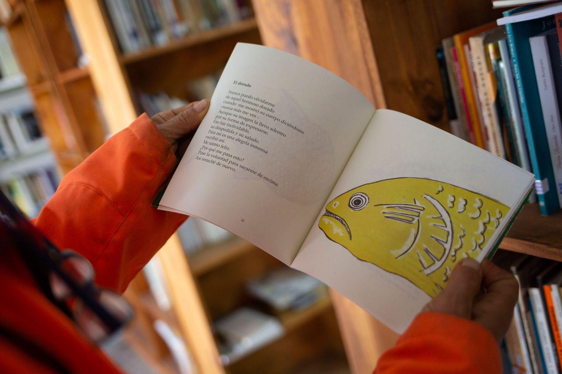 """La Biblioteca Popular Santa Genoveva tiene más de 7000 títulos y la """"bibliolancha"""" los acerca a las escuelas y a los isleños a los que les cuesta llegar hasta el lugar"""
