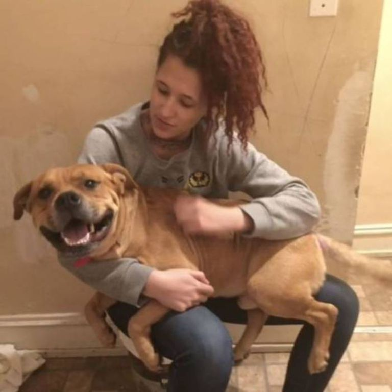 Aisha Nieves y Kovu pudieron reencontrarse luego de dos años de separación, en los que el animal encontró una nueva familia